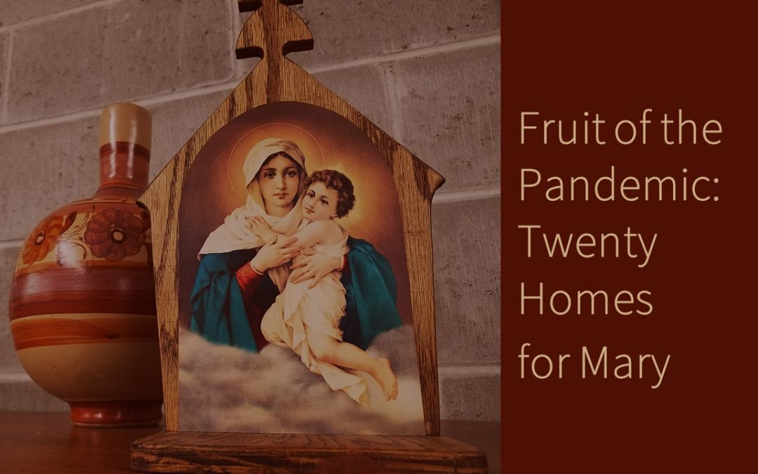 Fruit of the Pandemic: Twenty Homes for Mary